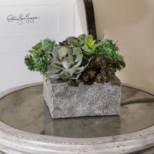 Uttermost 60117 - Uttermost Black Rock Desert Succulents